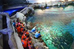 Ripley's Aquarium2