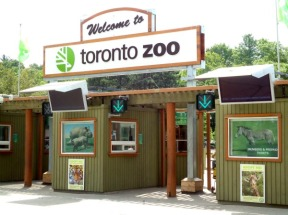 toronto-zoo4